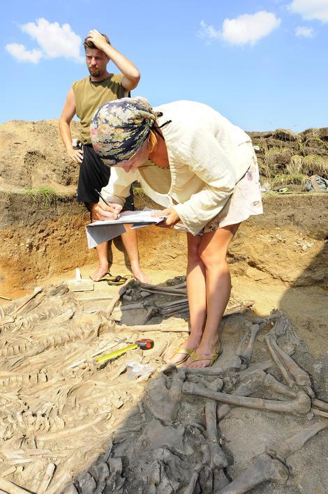 Veibrissä tutkitaan kivikautista hautausta, johon kuului kymmenen ihmisen jäänteet.