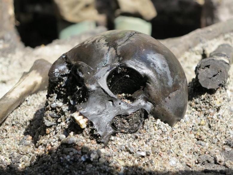 Alken Engen luulöydöt ovat hajallaan suossa. Kaksituhatta vuotta vanhojen sotureiden luut ovat hyvin säilyneitä ja niissä näkyy taisteluvammojen lisäksi petoeläinten hampaiden jälkiä.