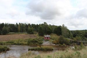 Liedon Kukkarkosken kivikautinen kalmisto