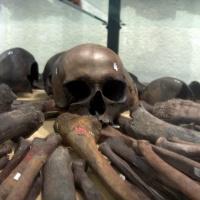 Lukijan kysymys: Onko Suomesta löydetty viikinkiaikainen joukkohauta?