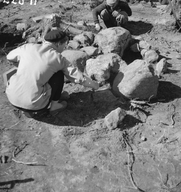 Pöytyän Yläneen Anivehmaanmäen viikinkiaikaisen ruumiskalmiston hautaa 55 kaivetaan vuonna 1957. Kuvassa näkyy haudan pinnalla oleva kiveys, jonka alla olevaan hautakuoppaan on laskettu vainaja nauloilla kiinnitettyssä arkussa. Koska Anivehmaanmäen haudoissa luuaines on lähes kokonaan maatunutta, perustuvat haudattujen sukupuoliarviot esineistöön. Kuvan haudassa antimena oli yksi keihäänkärki, joten vainaja on mahdollisesti ollut mies. Kuva: Anna-Liisa Hirviluoto.
