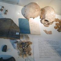 Ihmisjäännökset suomalaisissa museoissa