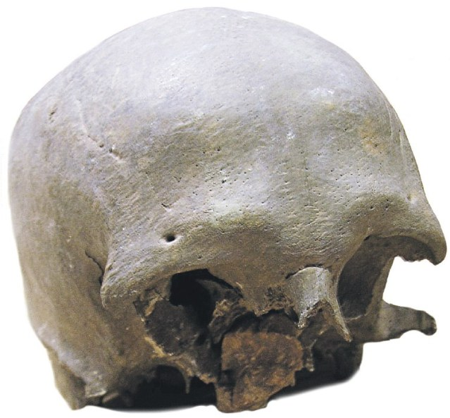 Turun tuomiokirkossa säilytettyä pääkalloa on perinteisesti pidetty Pyhälle Henrikille kuuluneena. Radiohiiliajoituksen mukaan kallo on 1100-luvulta, mutta DNA-tutkimuksn toivotaan tuovan lisätietoa siitä, kenelle kallo on saattanut kuulua. Kuva: Turun ja Kaarinan seurakuntayhtymä.
