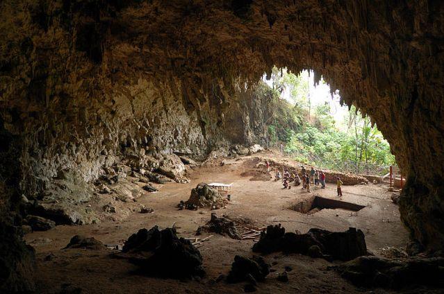 Fossiili löytyi vuonna 2003 Lian Buan luolasta Indonesian Floresista. Kuva: Wikimedia Commons.