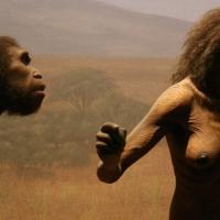 Luumuutokset kertovat Homo erectus -naisen elämästä ja kuolemasta