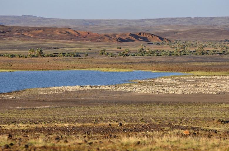 Turkana-järvi, jonka itärannalla sijaitsevasta Koobi Forasta on löytynyt runsaasti varhaisten homininien fossiileja. Alueen ilmasto on kuivaa, mikä poissulkee Treponema-bakteerin aiheuttaman infektion. Kuva:  Luciano Rizzello/Flickr CC.