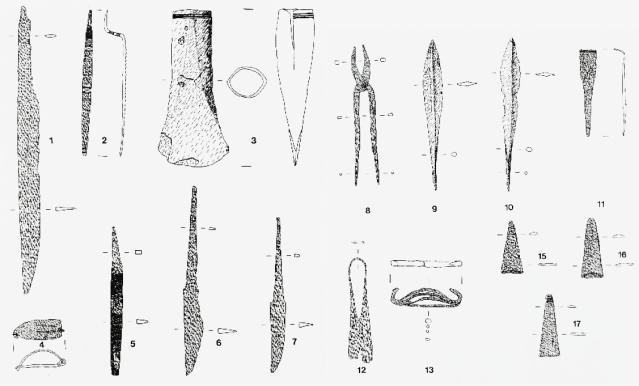 Ruotsista, Härjedalenista vuonna 1913 löytyneen vendelaikaisen haudan esineistö, joka sisältää sepäntyövälineiden lisäksi sankasoljen (nr. 4). Kuva: Gollwitzer 2001: Taf. 1.