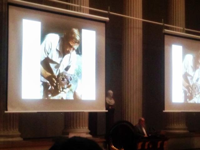 Leakeyn löytämä sapiens-kallo oli pettymys vanhemmille, jotka toivoivat Australopithecusta. Kuva: Juhani Gradistanac.