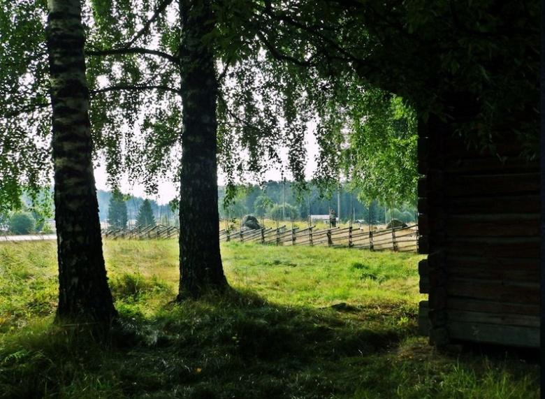 Kuva: Ulla Moilanen.
