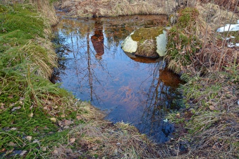 Kangasniemen Hokan Elämänlähde oli 1700-1800 -luvulla aktiivisesti käytetty terveyslähde. Lähteen veden kerrottiin vaikuttaneen voimakkaasti.