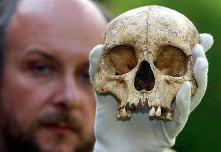 Tohtori Pete Wilson ja haudan 951 kallo.