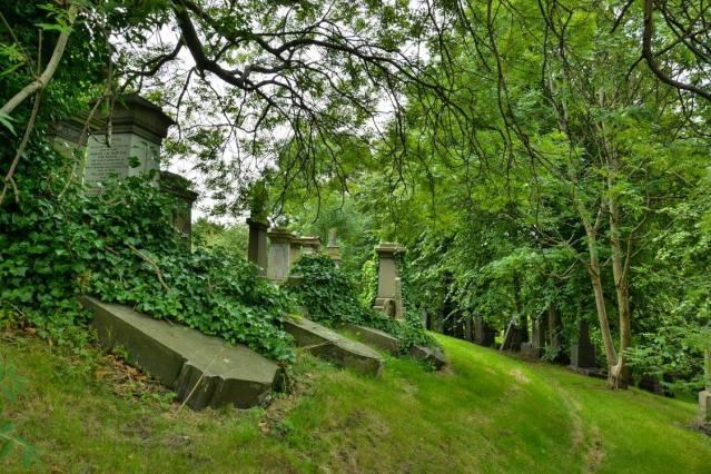 Puistomainen hautausmaa, jossa ei ole säännöllistä ruutukaavaa, on tyypillinen 1800-luvulle. Kuva: U. Moilanen.