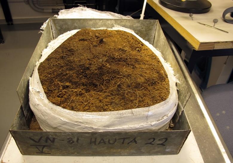 Haudan kipsattu pääosa laboratoriossa ennen kaivamista. Kuva: M.Kuusisto