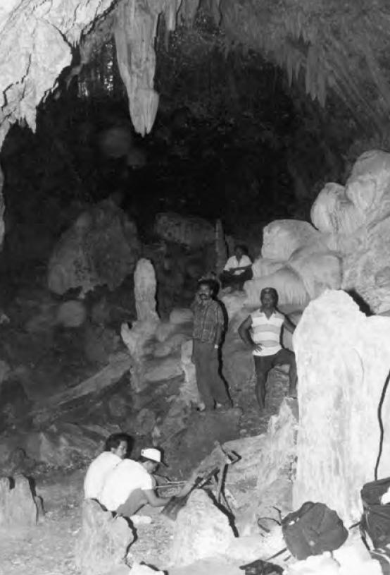 Liang Nabulein luolan sisäänkäynti. Kuva: O'Connor et al. 2007 Figure 7.4