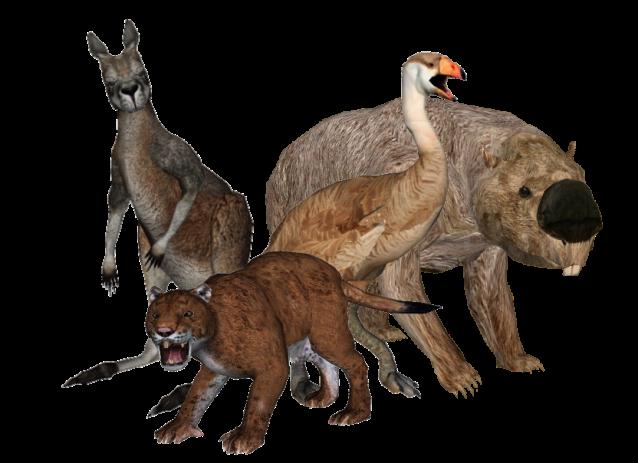 Australian megafaunaa, joka muodosti merkittävän osan mantereen vanhimman ihmisasutuksen ravinnosta. Kuva: Lazardi & Ringo.