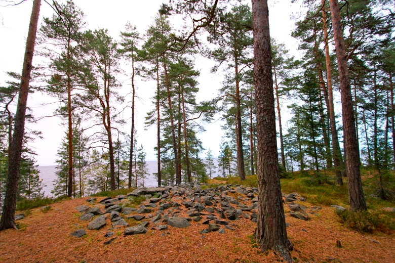 Reuharinniemi_NLuukko