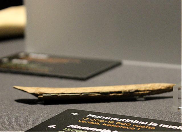 Mammutinluuhun kiinnitettyjä piimikroliittejä Kokorevo 1:n löytöpaikalta. Kuva: Heli Etu-Sihvola