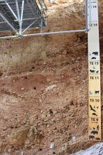 Sima del Elefanten (TE) eri-ikäisiä löytökerroksia, vanhimmat ihmisjäänteet ovat peräisin kerroksesta TE9. Kuva: Heli Etu-Sihvola