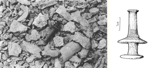 Skandinaavinen pronssinappi ja palaneita luita, joukossa kallon kappaleita. Oikealla nappi piirrettynä. Kuva: Miettinen 1992. Piirros: Museovirasto, Tuula Piili 1997 (Purhonen 2001: 123)
