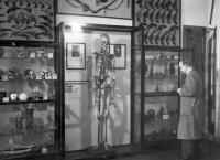 Matti Haapojan luuranko oli Rikosmuseossa esillä lähes 60 vuotta.