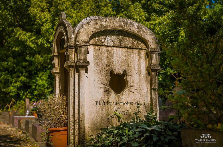 Eläinten hautamuistomerkit kertovat siitä, minkälainen asema kyseisellä eläimellä on ihmisten keskuudessa ollut. Kuvassa kissan hauta Pariisin pohjoispuolella sijaitsevalla Le Cimetière des Chiens et Autres Animaux Domestiques'lla, joka avattiin 1899. Kuva: Tommie Hansen (Wikimedia Commons).