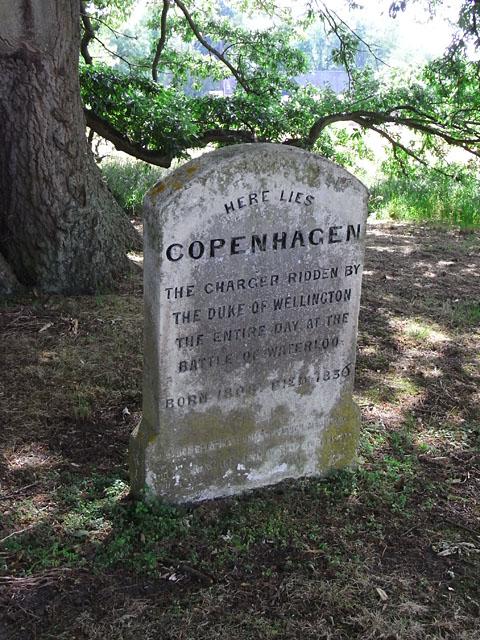 Waterloon taistelussa Wellingtonin herttuan ratsuna toimineen Copenhagen-nimisen hevosen hauta Englannissa Stratfield Sayen tilalla Englannissa. Viktoriaanisella ajalla yleistyneeseen hautausmaaturismiin liittyi usein myös käynti merkittävien eläinten haudoilla. Kuva: Andrew Smith (Wikimedia Commons).