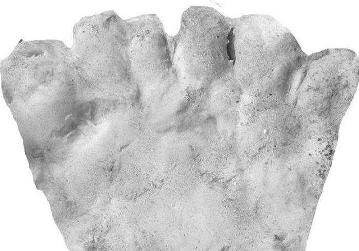 Pueblo Boniton seiniä on koristeltu jalkapainantein, joiden joukossa esiintyy myös kuusivarpaisia jälkiä. Kuvassa yhdestä tällaisesta jäljestä otettu kipsivalos. Tutkimuksissa löydettiin myös useita sellaisia sandaaleja sekä niiden kuvia, joihin kuudes varvas on mahtunut.