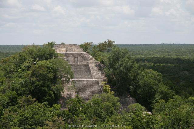 Calakmulin mayakaupungin suurin pyramidi. Kuva: Nicolas Marincic/CC.