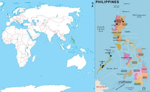 Filippiinien sijainti ja jutussa mainitut kohteet: 1. El Nido, 2. Duyong, 3. Tabon ja Manunggul, 4. Kabyan, 5. Callao