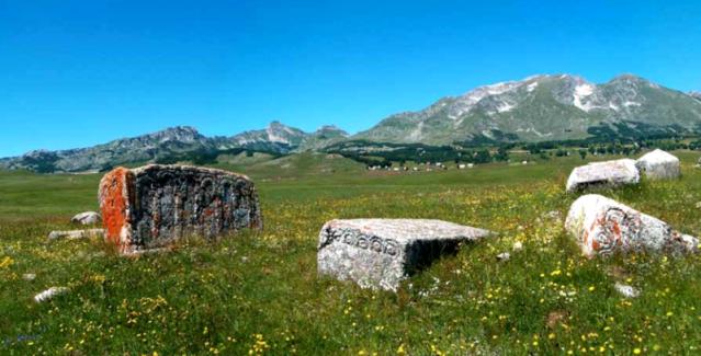 Stecci-kiviä Novakovićissa, Montenegrossa. Kuva: Wikimedia Commons.