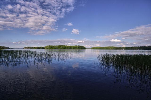 Maisemaa Päijänteeltä. Kuva: Miguel Virkkunen Carvalho/Flickr CC.