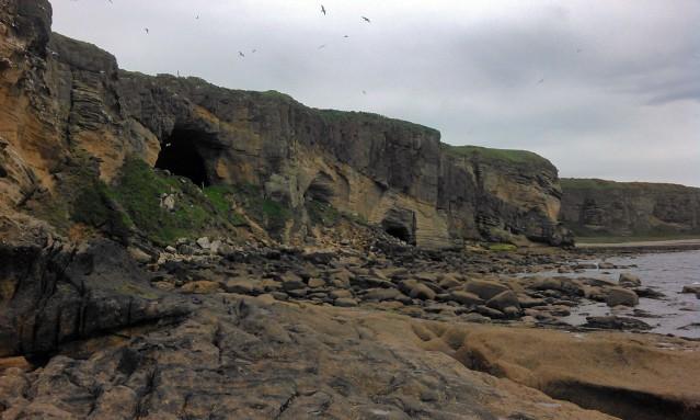 Coversean kaksi luolaa, joista toinen tunnetaan nimellä Sculptor's Cave, toinen Coversea Cave 2. Molemmista on löytynyt ihmisjäännöksiä. Coversea Cave 2:sta löydettiin vuoden 2014 kaivauksissa myös rautakautisen metallintyöstön jälkiä. Kuva: Society of Antiquaries of Scotland.