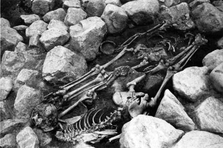 Vuonna 1974 Upplannista Bollstanäsista kaivetun viikinkiaikaisen polttohautauksen päällä oli kaksi päättömänä, vatsallaan haudattua vainajaa sekä näiden yhteydessä rautakautista keramiikkaa. Ove Hemmendorff (1984) on tulkinnut ruumishautaukset uhratuiksi orjiksi. Kuva: Hemmendorff 1984, fig. 2.
