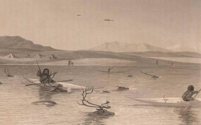 Vuonna 1824 tehty piirros peuroja nahkakanooteista metsästävistä inuiiteista. Pohjoismaiden kivikautisten veneiden on usein arveltu olleen samalla tekniikalla tehtyjä. Kuva: The John Carter Brown Library, Brown University (CC). https://www.brown.edu/academics/libraries/john-carter-brown/about