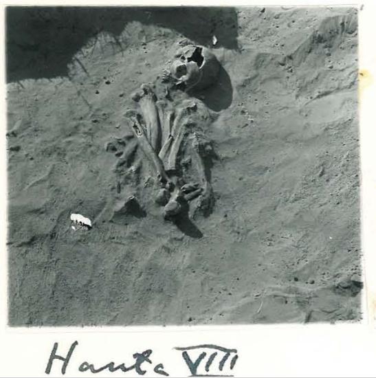 Luut, jotka eivät ole anatomisesti oikeilla paikoillaan, kertovat joka tapauksessa luiden sekundaarisesta käsittelystä - oli taustalla mikä syy tahansa. Kuvan luut Mikkelin Visulahden varhaiskeskiaikaisesta kalmistosta. (Leppäaho 1955).