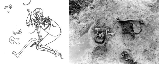 Sigersdalin neoliittisen kivikauden suolöydöt on tulkittu ihmisuhreiksi. Kuva: Bennike & Ebbesen 1986, fig. 5-6.