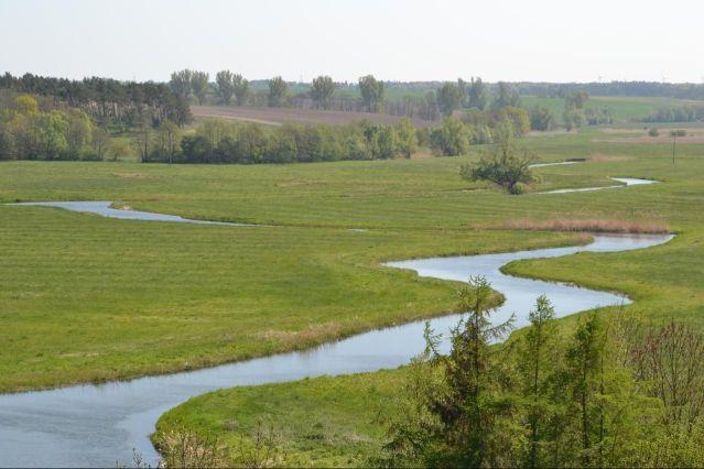Tollense-joki Saksassa. Kuva: Thomas Kohler/Wikimedia Commons.