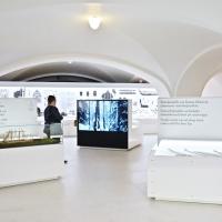 Arvostelussa Kansallismuseon uusi esihistorian perusnäyttely