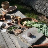 Riistaa, marjoja ja pähkinöitä: Kivikautista ruokaa Suomen alueella