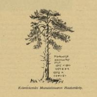 Kittilän kansanperinnettä ja saamelaisten hautausmaita