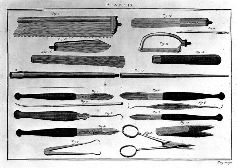 Kuvataulu anatomisessa dissektiossa käytetyistä työkaluista