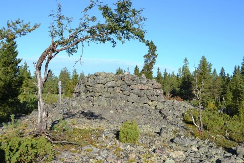Piispankivenä tunnettu rajakivi sijaitsee Tornion Iso-Huiturin saaren korkeimmalla kohdalla. Tornionlaakson museo – Tornedalens museum, kuva-arkisto.
