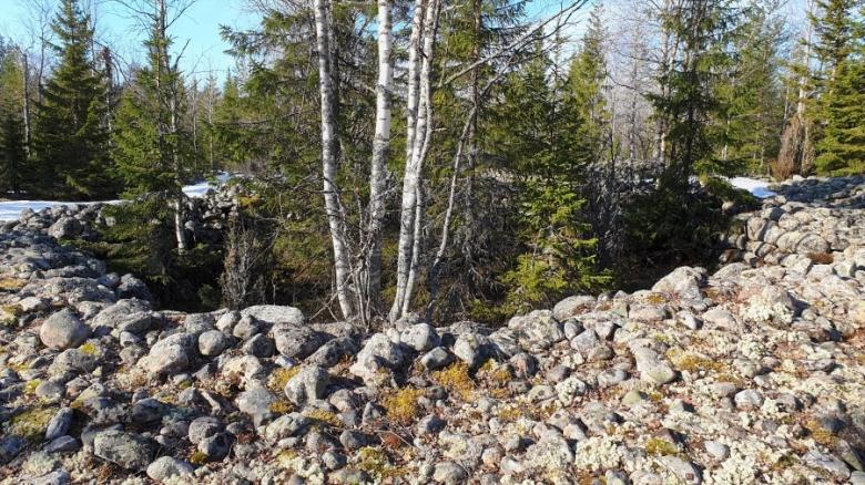 """Tornion Rakanmäen kivirakkaan kaivettu ja rakennettu """"susihauta"""" vasemmalla, Keminmaan Jatulinlehdon vastaavanlainen rakenne oikealla."""