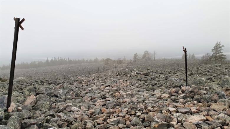 Muinaista rantakivikkoa Tervolan ja Rovaniemen alueilla sijaitsevalla Vammavaaralla
