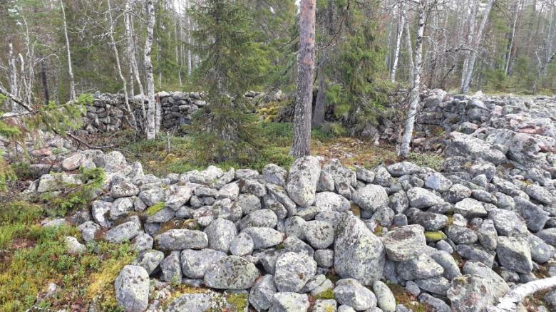 Keminmaan Jatulinlehdon vastaavanlainen rakenne oikealla. Kuva: Tornionlaakson museo – Tornedalens museum, kuva-arkisto.